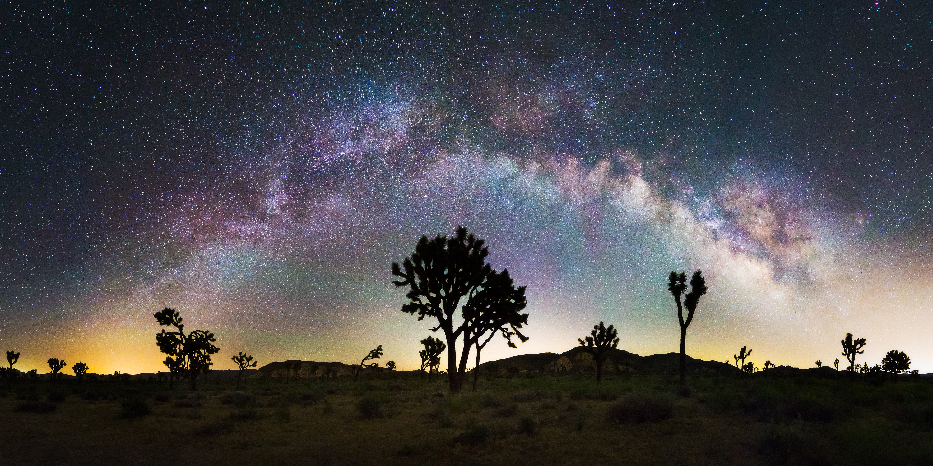 A Crystal Clear Night At Joshua Tree National Park Imageix