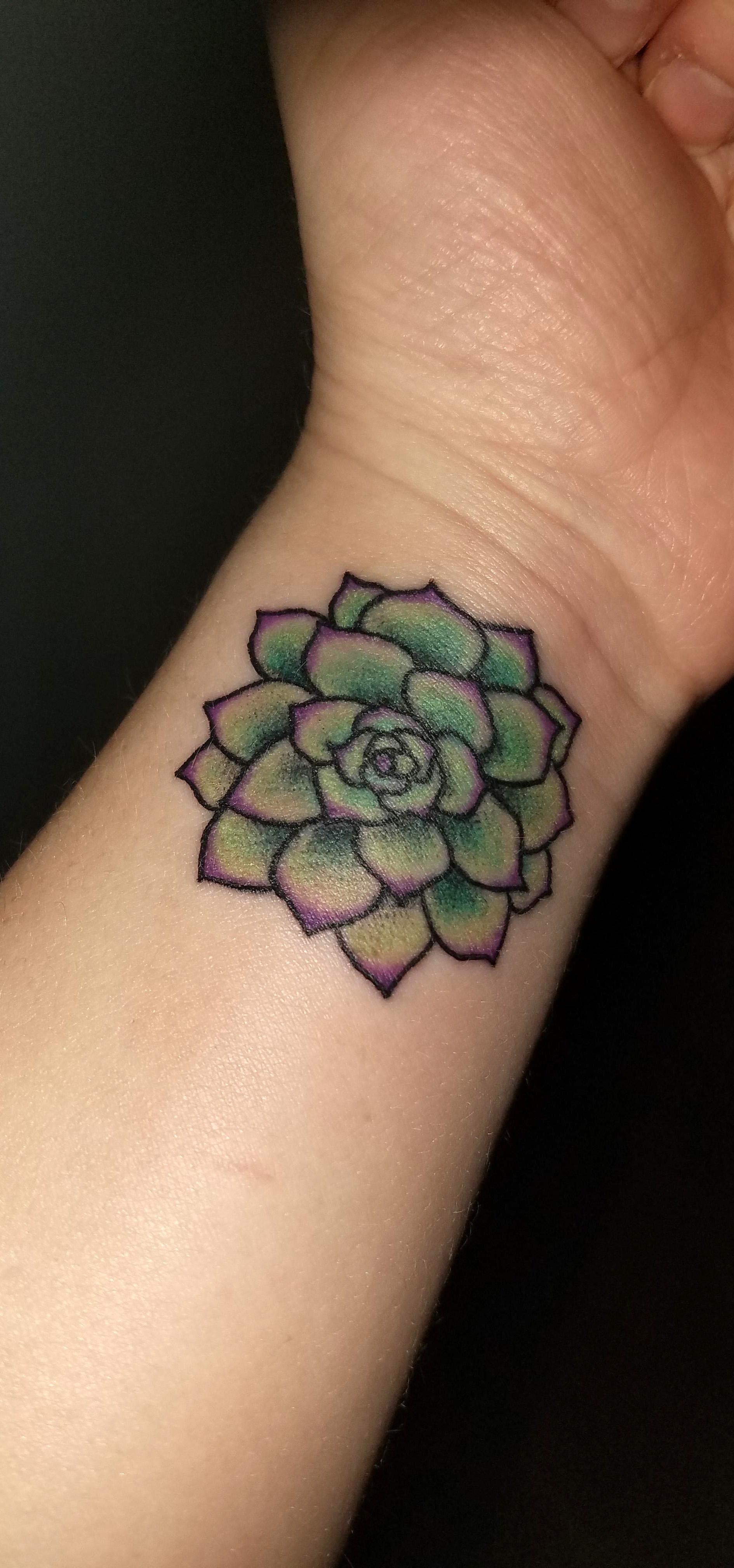 Succulent Tattoo By Austin Archer Kingdom Tattoo Decatur